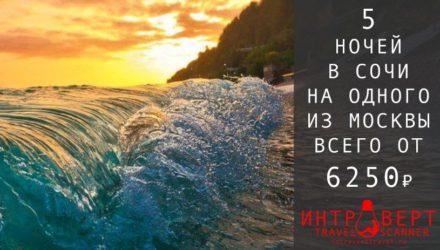 Тур на одного в Сочи из Москвы за 6250₽