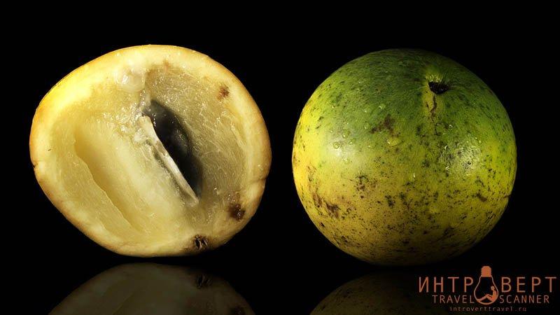 экзотические фрукты - Абиу