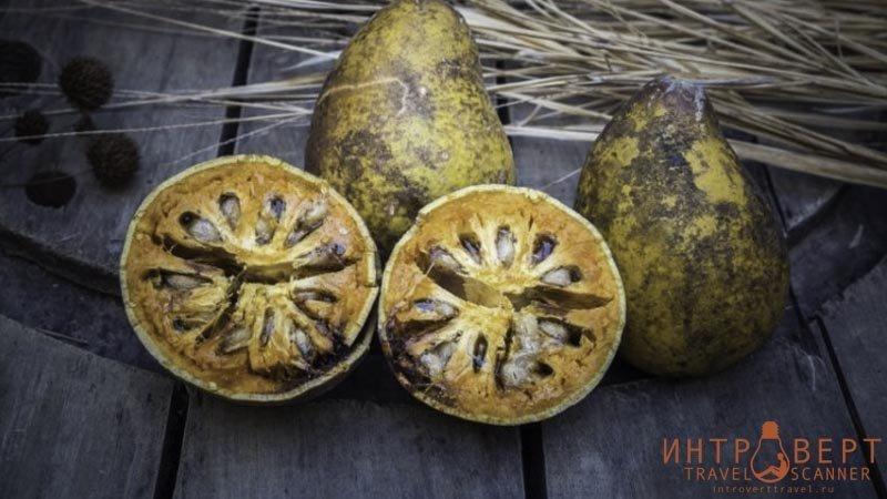 Баиль (древесное яблоко, каменное яблоко, айва бенгальская)