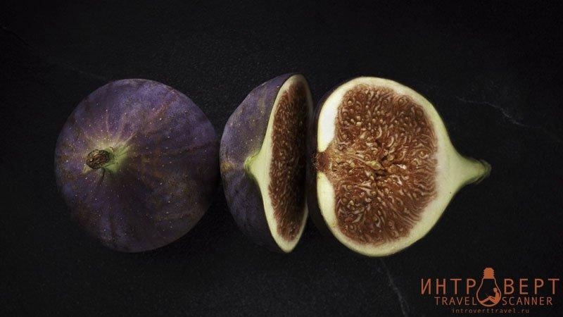 Инжир (смоковница, фига, Ficus carica, смоква, смирнская ягода, винная ягода)