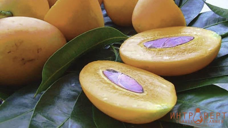 Тайская слива (марианская слива, сливовое манго, mayun, марианское манго)