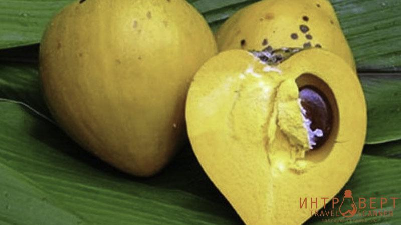 Cапотэ желтое (канистел, канистель)
